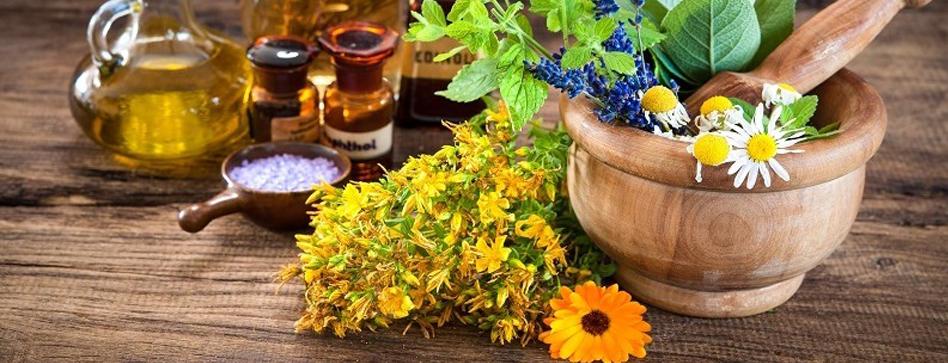 فواید و خواص گیاهان دارویی قابل پرورش در خانه